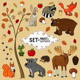 North forest animals. Autumn north forest animals set vector illustration Royalty Free Stock Photo