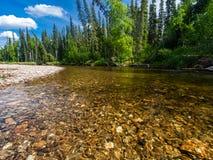 North Fork реки Chena Стоковые Фото