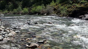 North Fork American River Moving Towards Camera stock video