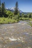 North Fork del río de Gunnison, parque de estado de Paonia, Colorado Fotografía de archivo libre de regalías