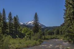 North Fork del río de Gunnison, parque de estado de Paonia, Colorado Imagen de archivo libre de regalías