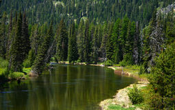North Fork des Payette Flusses lizenzfreies stockfoto