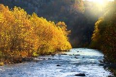 North Fork il fiume Potomac Fotografie Stock
