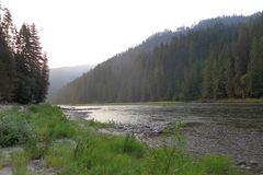 Selway River. In Idaho, early morning Stock Image