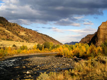 North Fork Shoshone river (Wyoming, USA). Fall colors in North Fork Shoshone river, near Cody (Wyoming, USA Stock Photography