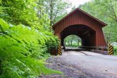 North Fork Yachats bro Arkivbild