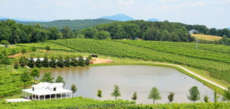 North Georgia vineyard and pond Royalty Free Stock Images