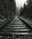 North Idaho Train Tracks royalty free stock images