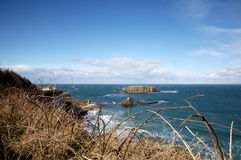 North Ireland coastline Royalty Free Stock Photography