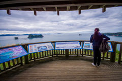 NORTH ISLAND, NEW ZEALAND- MAY 16, 2017: An unidentified woman reading an informative sign in cathedral Cove marine Royalty Free Stock Photography