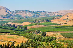North Israel. View of the Golan. North Israel royalty free stock photo