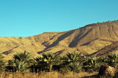 North Israel . Mountain in the Galilee from north to west . Israel stock images