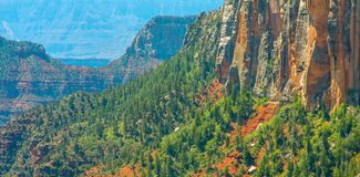 North Kaibab Trail in Grand Canyon National Park, Arizona, United States of America.  stock photos