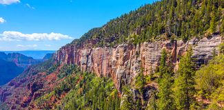 North Kaibab Trail in Grand Canyon National Park, Arizona, United States of America.  royalty free stock photography