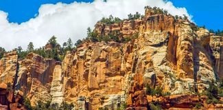 North Kaibab Trail in Grand Canyon National Park, Arizona, United States of America.  royalty free stock photo