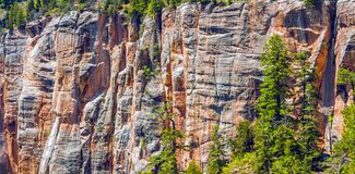 North Kaibab Trail in Grand Canyon National Park, Arizona, United States of America stock images