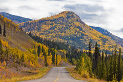 North Klondike Highway golden taiga Yukon Canada Royalty Free Stock Photos