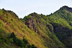 North Korea scenery. North Korea. Amazing scenery. Mountains covered with red korean pine trees and maples at sunset stock images