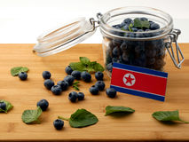 North Korean flag on a wooden plank with blueberries  on Stock Images