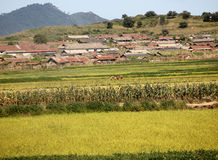 North korean village scenery Stock Images