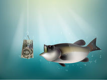 North korean won money paper on fish hook. Fishing using north korean won money cash as bait, north korean investment risk concept idea Royalty Free Stock Image