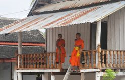 North-Laos: Two young buddhist monks in Luang Prabang, the religious capital of Laos stock images