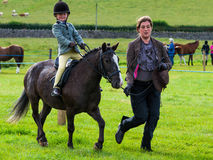 North Lonsdale Show - Equestrian Stock Image