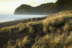 North Piha. Beach and it's headland Te Waha at dusk with the dunes nicely lit by low sun Royalty Free Stock Photography