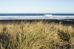 North Piha Beach royalty free stock photos