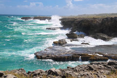 The north point of the island Barbados Animal Flower Bay Stock Photo