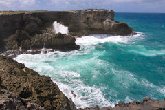 The north point of the island Barbados Animal Flower Bay Royalty Free Stock Photo