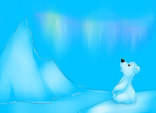 North Pole Baby polar bear  illustration Royalty Free Stock Image