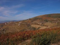 North Portugal landscape with mountains and vineyards stock photography