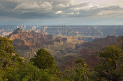 North Rim Grand Canyon Royalty Free Stock Photography
