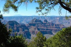 North rim of the grand canyon Stock Photo