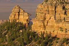 Free North Rim Grand Canyon Royalty Free Stock Image - 3750386