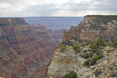 North Rim Grand Canyon Landscape Royalty Free Stock Images