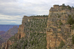 North Rim Grand Canyon Landscape Royalty Free Stock Photography