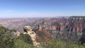 North Rim Grand Canyon Landscape Pan stock video