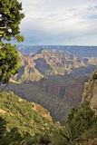 North Rim Landscape Royalty Free Stock Images