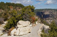 North Rim path. Mountain trail at the Grand Canyon Stock Image
