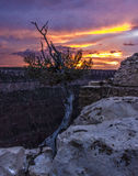North Rim Sunset. A sunset visible from the North Rim of the Grand Canyon Royalty Free Stock Images