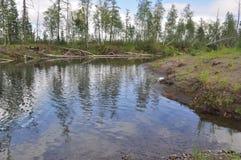 North river landscape. Stock Images