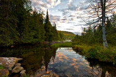 North River Morning Bliss. This small creek is located in North River, deep in the Adirondack Mountains stock images