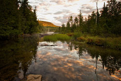 North River Sunrise Reflections. This small creek is located in North River, deep in the Adirondack Mountains royalty free stock photos