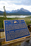 The North Saskatchewan River. In Jasper National Park, Canada stock photo