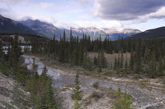 North Saskatchewan River in Canadian Rockies Royalty Free Stock Images
