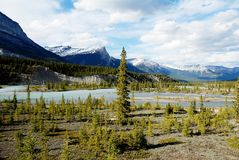 North Saskatchewan River,Canadian Rockies,Canada Royalty Free Stock Photo