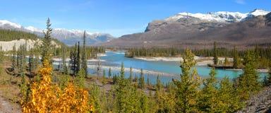 North Saskatchewan river in jasper. Panoramic view of North Saskatchewan river in jasper stock photography