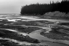 North Saskatchewan River. Landscape featuring the North Saskatchewan River, which flows through Banff National Park royalty free stock images